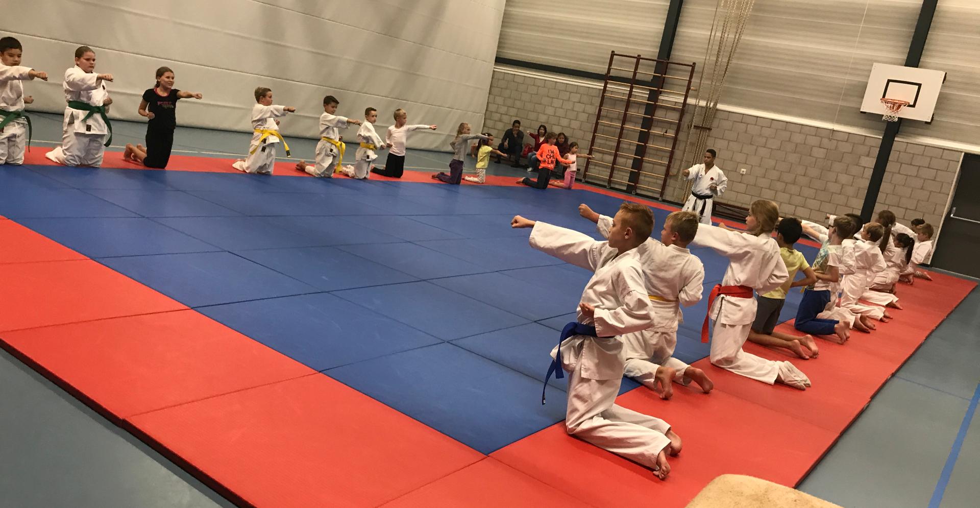 Weerbaarheid trainen met jiu-jitsu zelfverdediging technieken
