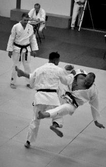 jiu-jitsu lessen in Alkmaar voor volwassenen